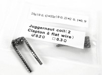 Pre-Built 0.2Ω Juggernaut Coil (2 Clapton & Flat Wire) (Set of 5)